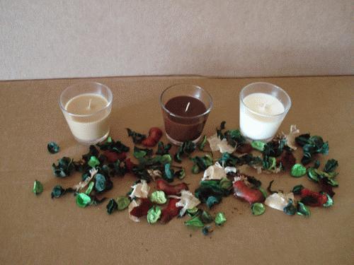 Aromaterapia o poder terapêutico das essências aromáticas das plantas.