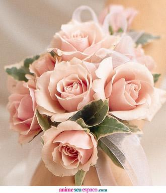 rosa do amor